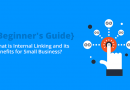 {Beginner's Guide}: What is Internal Linking and its Benefits for Small Business?